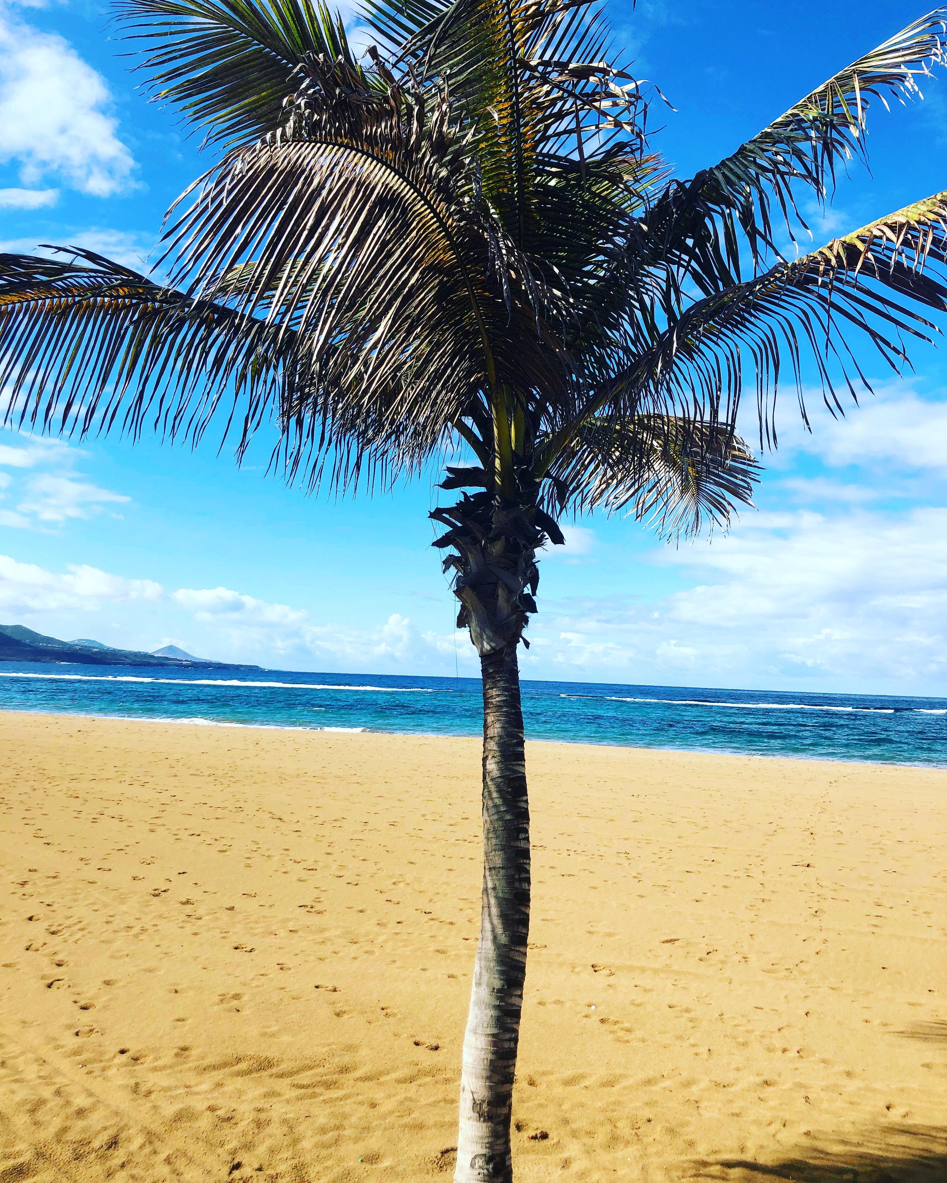Ovanligt Kallt Och Dåligt Väder På Kanarieöarna Liniz Travel